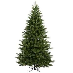10 x 69 Black Hills Spruce 1550 Clear Lights 3415T