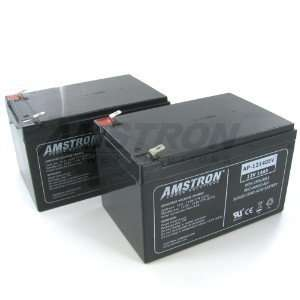 Amstron AP 12140EV Deep Cycle Battery (2 pk) Electronics