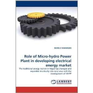 Role of Micro hydro Power Plant in developing electrical