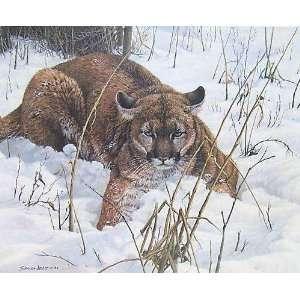 John Seerey Lester   Lying Low   Cougar Artists Proof