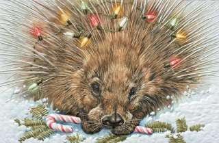 16 Boxed Embossed Christmas Cards Porcupine