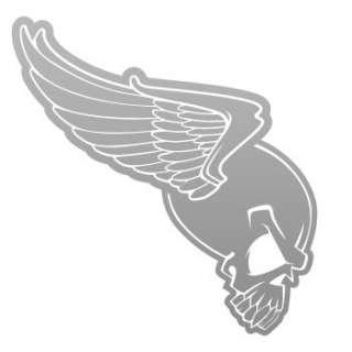 Tribal Decal Sticker flying Skull Wing Car Window ZE564