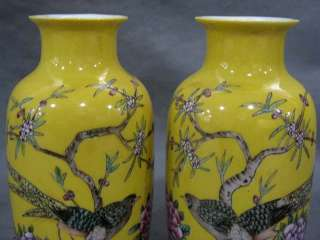 FINE A PAIR CHINESE FAMILLE ROSE PORCELAIN FLOWERS & BIRDS VASE