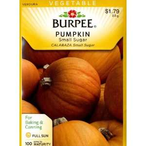Burpee 60819 Pumpkin Small Sugar Seed Packet Patio, Lawn