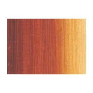 Fine Artists Oil Color   40 ml Tube   Mars Orange