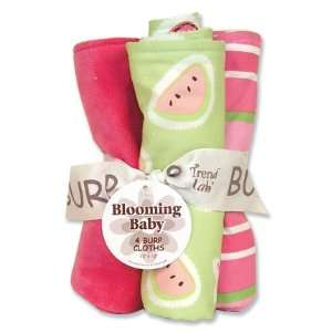 Juicie Fruit Burp Cloth Set
