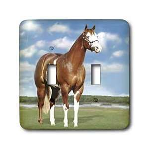 Horse   Champion Paint Quarter Horse   Light Switch Covers