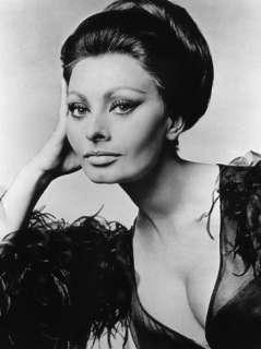Sophia Loren, c.1960s Prints at AllPosters
