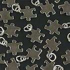 CHARMS AUTISM FUNDRAISER PUZZLE PIECE CHARMS AUTISM CHARM LOT OF 5