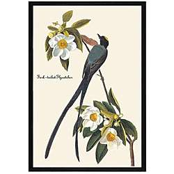 John James Audubon Fork Tail Fly Catcher Framed Print Art