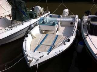Barca 6m circa con motore johnson 40 4 tempi a Roma    Annunci
