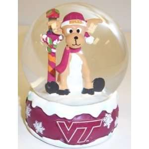 Virginia Tech Hokies NCAA Holiday Snow Globe: Sports & Outdoors
