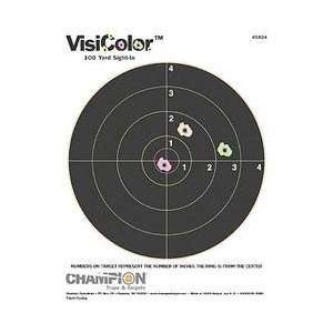 High Visibility Paper Targets, 10 Pack:  Sports & Outdoors