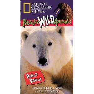 National Geographics Really Wild Animals Polar Prowl